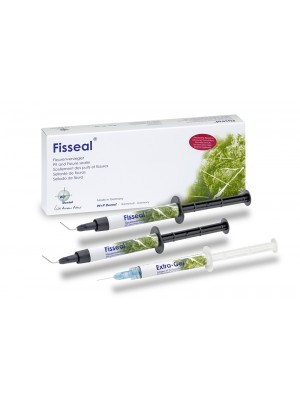 Fisseal